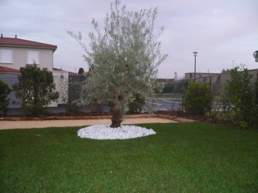 Massifs espaces verts jardin arrosage terrasses for Entretien jardin gujan mestras